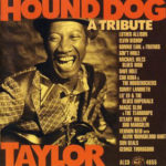A Tribute To Hound Dog Taylor - FrontB