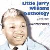 Little Jerry Williams