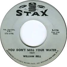You Dont Miss Your water - W. Bell -Soulbot